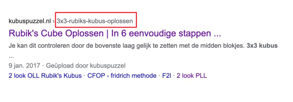 URL zichtbaar Google